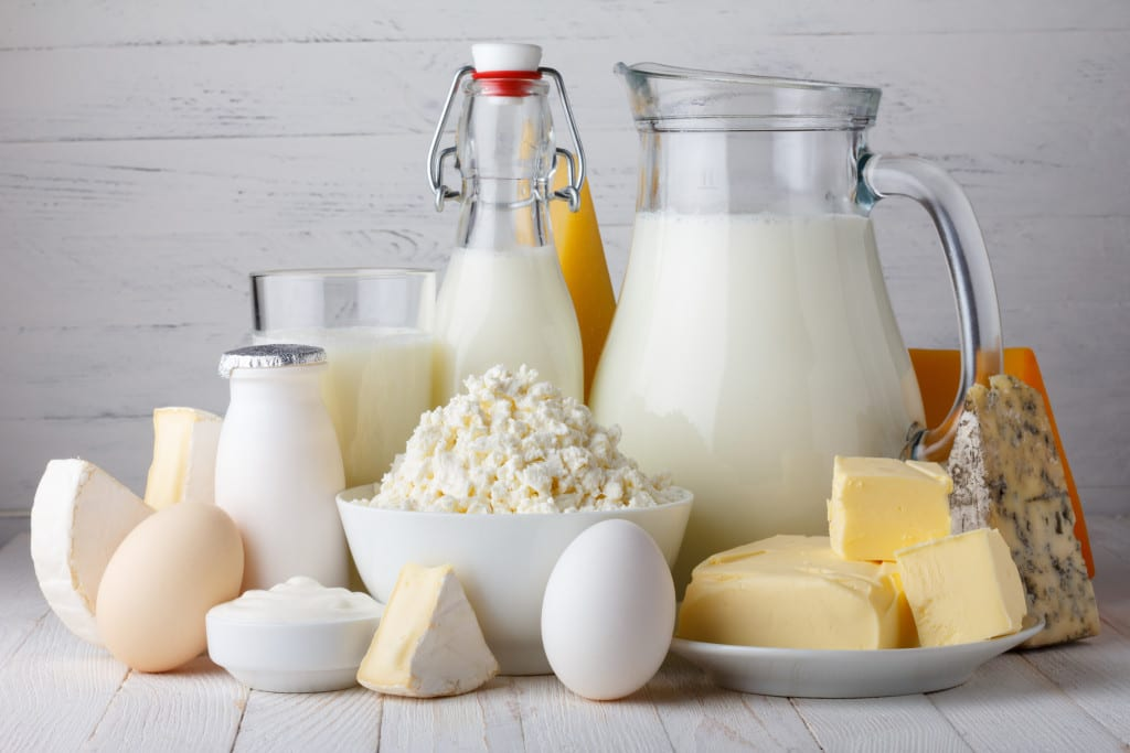 Do Dairy Products Help Us Burn Fat?